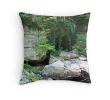 A taste for adventure Throw Pillow