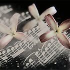 La Musique Et Les Fleurs... by Qnita