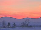Snowy Sunset Silhouette   by BettyEDuncan