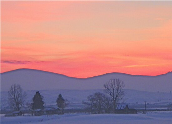 Snowy Sunset Silhouette   by © Betty E Duncan ~ Blue Mountain Blessings Photography