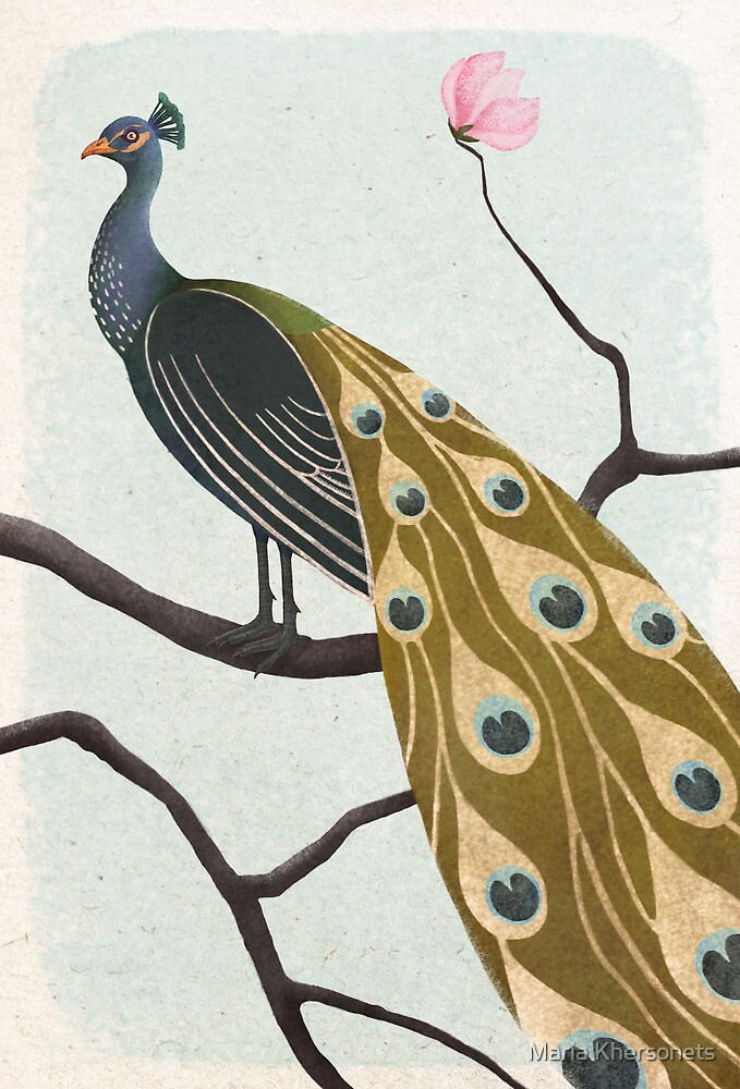 a peacock by bymuravka