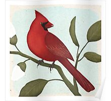an american red cardinal Poster
