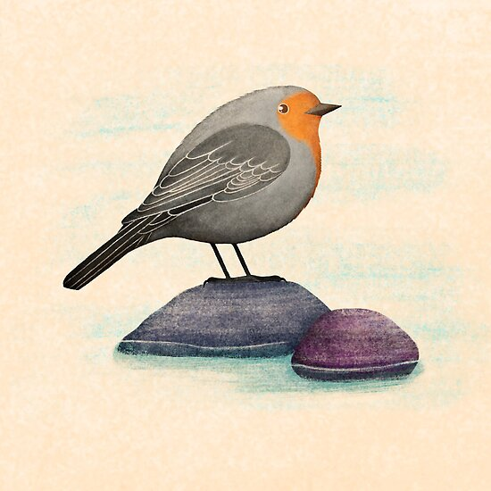 a robin bird on a rock by bymuravka