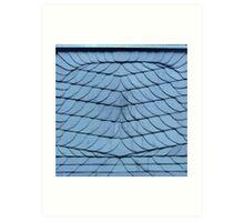 shingles Art Print