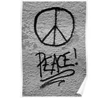 Peace for mankind Poster