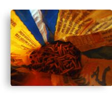 02-03-11  Noodles-Eye-View Canvas Print