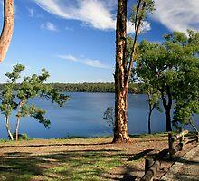 Yan Yean Reservoir,Victoria by Pauline Tims