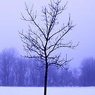 Feeling a bit misty... by Earl McCall