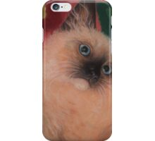 Baby Maxwell iPhone Case/Skin