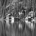 Mountain Lake by Warren Brown