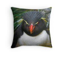 Rock-hopper Penguin Falkland Is.  Throw Pillow