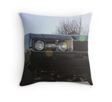 Ready For A Spin Throw Pillow