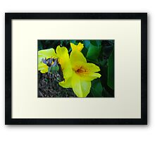 Something Yellow Framed Print