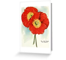 Gorgeous Poppies: 1940 illustration Greeting Card