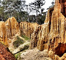 Golden Gully - Tambaroora NSW Australia by Bev Woodman