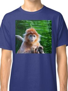 GUESS WHO WON THE STARING CONTEST? Classic T-Shirt