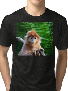 GUESS WHO WON THE STARING CONTEST? Tri-blend T-Shirt