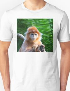 GUESS WHO WON THE STARING CONTEST? T-Shirt