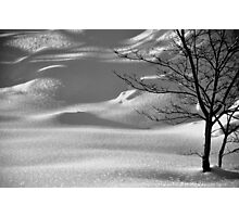 Snowscape-A Look Beyond the Ice Photographic Print