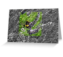 Busy little bumble bee Greeting Card