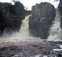High Force by Paul  Green