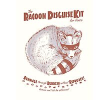 The Raccoon Disguise Kit for Foxes Photographic Print