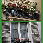 Parisien windows by BronReid