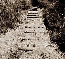 Steps to take by ragman