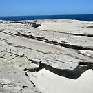 Sea Desert  - Kurnell Australia by Tina Wright