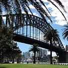 Sydney Harbor Bridge by © Loree McComb