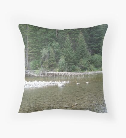 Ribs Throw Pillow