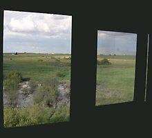 window green by calcidiscus