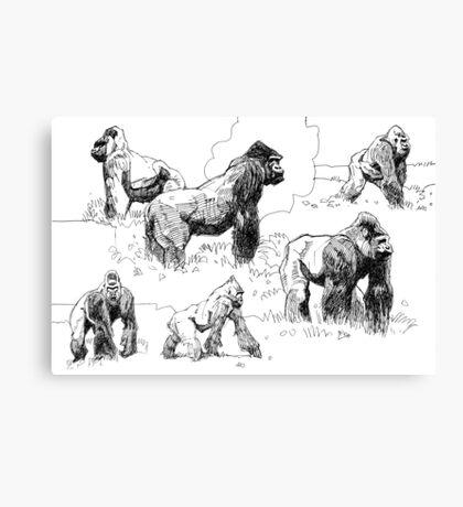 Gorillas Canvas Print