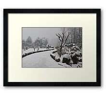 Botanical Garden after Snowstorm #2 Framed Print