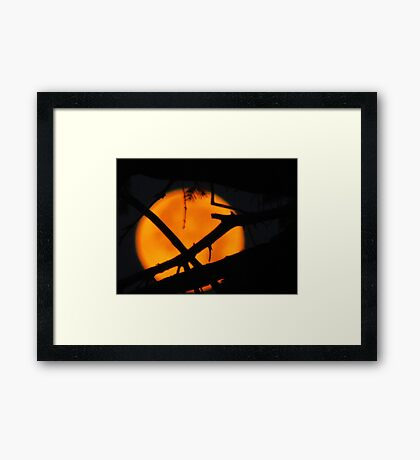 The Moon In The Morning Framed Print
