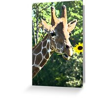 Sunflower Giraffe  Greeting Card