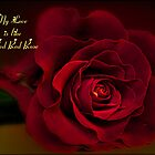 My Love is Like a Red Red Rose by Brenda Boisvert