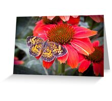 Those Colors!  Greeting Card