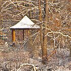 Gazebo with new snow (colored version) by RGHunt
