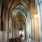 St Albans Cathedral 5 by Paul  Green