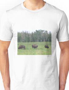 Bison Grazing 2, Elk Lake, Alberta, Canada Unisex T-Shirt