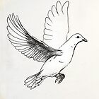 Dove in Flight by Mawsh