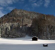 I love winter - Montriond, Alps by zoephilie
