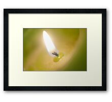 Light Candle / La Luz de la Vela Framed Print