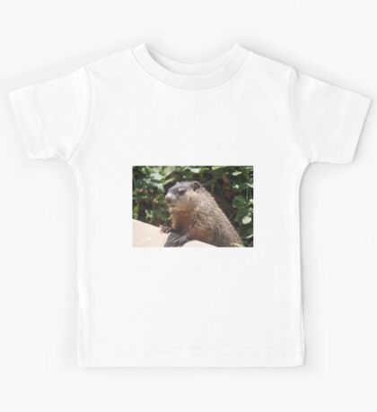 So what's this business about a shadow? Kids Tee
