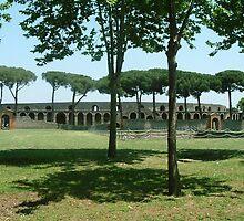 Pompeii by Alison Ward