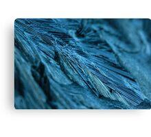 The blue thaw. Canvas Print