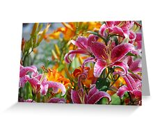 Lovely Lillies Greeting Card