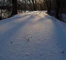 icy trail by Mark de Jong