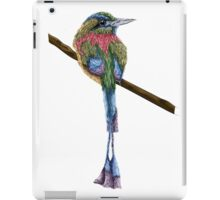 Digital Colorful Bird iPad Case/Skin
